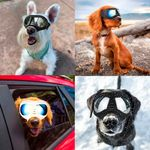 Dog Goggles Large & Small Breed 🔥 50% OFF - LIMITED TIME ONLY 🔥