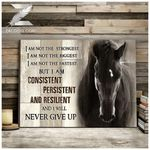 Canvas - Horse - I Will Never Give Up