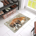 Cute Boxer Dog Are Lying On Doormat Rubber