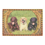 Security Warning This Home Protected By Labrador Doormat