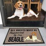 Beagle Dog Funny Outdoor Indoor Wellcome Doormat - Funny Outdoor Indoor Wellcome Doormat