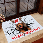 Dachshund Merry Christmas Doormat I Hope You Like Dogs Doormat Gift Dog Lovers