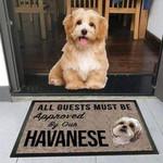 Havanese Dog - Funny Outdoor Indoor Wellcome Doormat