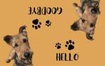 Custom Dog Doormat Pet Doormat Persoanlized Doormat for More Pets