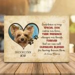 Sometimes A Very Special Dog Enters Our Live Pet Memorial Personalized Pet Gift Wall Art Poster Canvas