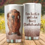 Dachshund Dog I'm Just A Girl Who Love Dachshunds Stainless Steel Tumbler Perfect Gifts For Dog Lover Tumbler Cups For Coffee/Tea, Great Customized Gifts For Birthday Christmas Thanksgiving