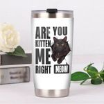 Black Cat Are You Kitten Me Right Meow White Background Stainless Steel Tumbler Perfect Gifts For Cat Lover Tumbler Cups For Coffee/Tea, Great Customized Gifts For Birthday Christmas Thanksgiving