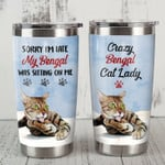 Bengal Cat Tumbler My Bengal Was Sitting On Me Tumbler Gifts For Bengal Lovers, Cat Lovers On Birthday Christmas 20 Oz Sports Bottle Stainless Steel Vacuum Insulated Tumbler