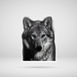 Cool Wolf Face 2 Stickers Shirts Hoodies Cups Mugs Handbags Totes
