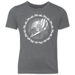 Fairytail Youth Triblend T-Shirt