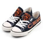 NFL Chicago Bears Limited Edition AIO New Low Top Shoes