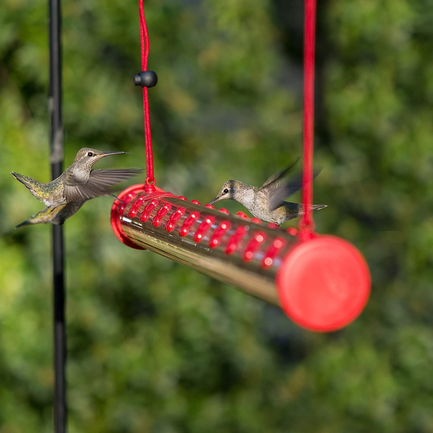🔥30% OFF🔥Bob's Best Hummingbird Feeder - Buy 2 Give Free Cleaning Brush and Hook
