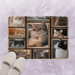 3D Cat HC2011379VT Bath Math