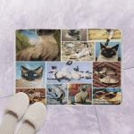 Siamese Cat CLT170724 Bath Mat
