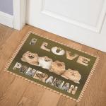 Pomeranian CL11110244MDQ Door Mat