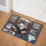 Skye Ragdoll Cat DHC22113720TD Door Mat