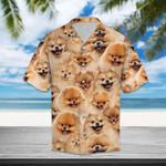 Pomeranian Hawaiian Shirt | For Men & Women | Adult | HW1111