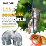 Squirrels Trouble