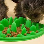 Cat Slow Feeder (Anti-Vomiting)