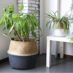 Grey & White Seagrass Basket