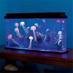 Jellyfish Tank Aquarium Kit