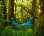 Multifunctional Hammock Tent