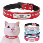 Adjustable Leather Cat Collar With Nameplate