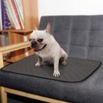 Reusable Mat For Dog