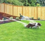 Spraycrow - Solar Powered Motion Activated Animal Repellent Garden Sprinkler