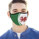 Wales Flag Coat Of Arms Face Mask - Green - J6