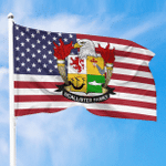 1sttheworld Premium Flag - McAllister American Family Crest Flag A7