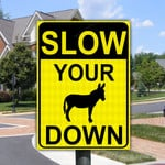 Funny Gift Slow Your Ass Down Metal Sign
