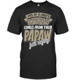Veteran Shirt, Dad Shirt, 99% A Child's Awesomeness Comes From Their Papaw T-Shirt KM1006 - Spreadstores