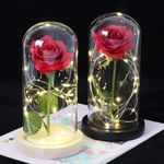 Middle Beauty And The Beast Rose In Glass Dome Forever Pink Red Rose Preserved Rose Belle Rose Special Romantic Gift, valentine's day gift