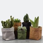 Reusable Mini Succulents Planter Pot Washable Paper Flowerpot Eco-friendly Desktop Flower Pots Multi-use Home Storage Bag