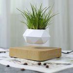 Levitating Air Bonsai Pot Rotation Flower Pot Planters Magnetic Suspension Floating Pot Potted Plant Home Desk Decor