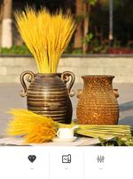 50pcs Real Wheat Ear Flower Decoration Natural Pampas Rabbit Tail Grass Dried Flowers For Wedding Party DIY Craft Scrapbook Bouquet