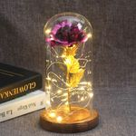 Middle Beauty And The Beast Rose In Glass Dome Forever Gold Red Rose Preserved Rose Belle Rose Special Romantic Gift, Valentine's day gift