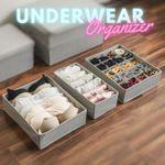 Karey Multifunctional Space Saving Closet Organizer For Underwear, Bra, Socks & More