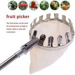 Cesta con la cabeza del recolector de fruta