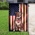 Pit bull American Flag