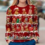 Vizsla Red Ugly Christmas Sweatshirt Unique Animals With Santa Hats Sweatshirt Unisex Clothes