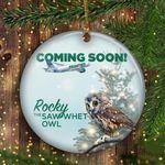 Rocky Rockefeller Saw Whet Owl Ornament Cute Owl Ornaments For Christmas Tree