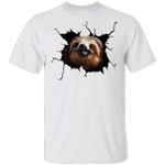 Sloth Came Out Shirt Sloth Tee Shirt Cute Graphic Unisex Gift For Brothers Idea