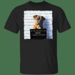 Pitbull On The Naughty List T-Shirt Bad Dog Jail Prisoner Shirt Design Present For Dog Lover