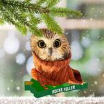 Owl Rockefeller Ornament Rockefeller Christmas Tree Lighting 2020 Gift For Owl Lovers