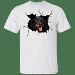 Dachshund Came Out T-Shirt Cute Dachshund Clothes For Human Weiner Dog Shirt For Men Women