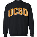 UCSD Sweatshirt University Of California San Diego Vintage Sweatshirt Gift For Adults