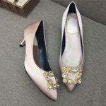 Pointed Toe Low Heel ShoeSilk