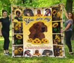 Dachshund You Are My Sunshine Sunflower Quilt Blanket